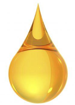 Olje Iv San Bernard